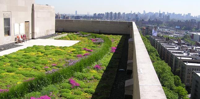 Πράσινες στέγες: Η λύση για την αντιμετώπιση της υπερθέρμανσης στις πόλεις