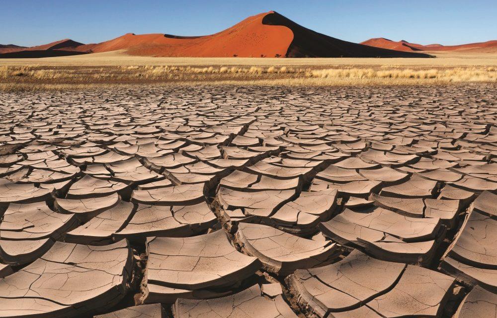 Η Bayer επιβεβαιώνει την ηγετική της θέση στον τομέα των δράσεων βιωσιμότητας για το κλίμα